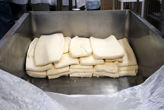 blocks of curds