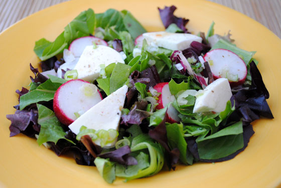 Spring Salad with Fresh Mozzarella and House Dressing