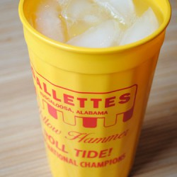 Yellow Hammer in a Gallettes Cup