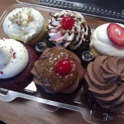 Blue Velvet Cupcakes 6-Pack