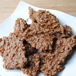 Unbaked Fudge Cookies by So, How's It Taste?