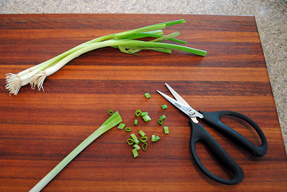 OXO Herb Snips