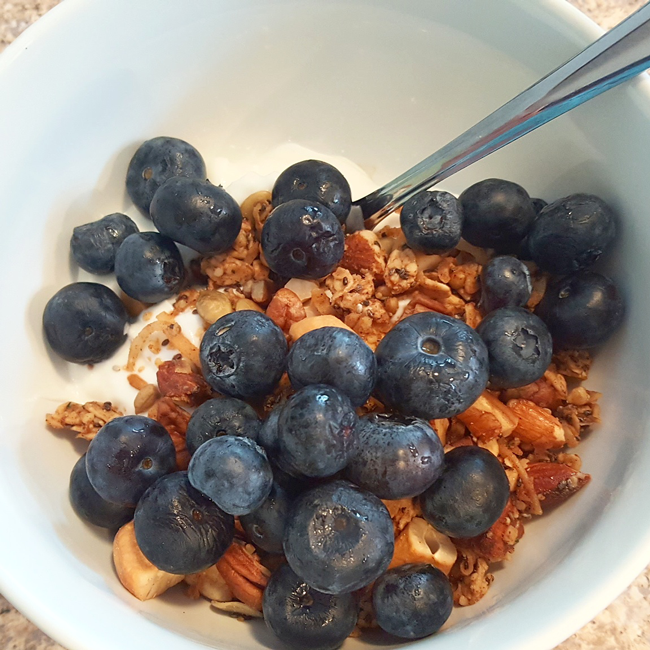 Not-Too-Sweet Granola with Blueberries and Greek Yogurt