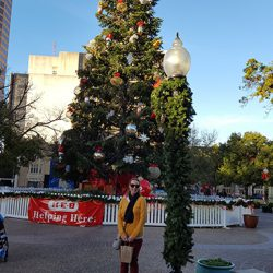 Christmas Tree at Travis Park