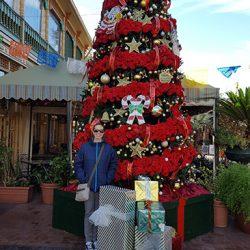 Christmas Tree at Historic Market Square